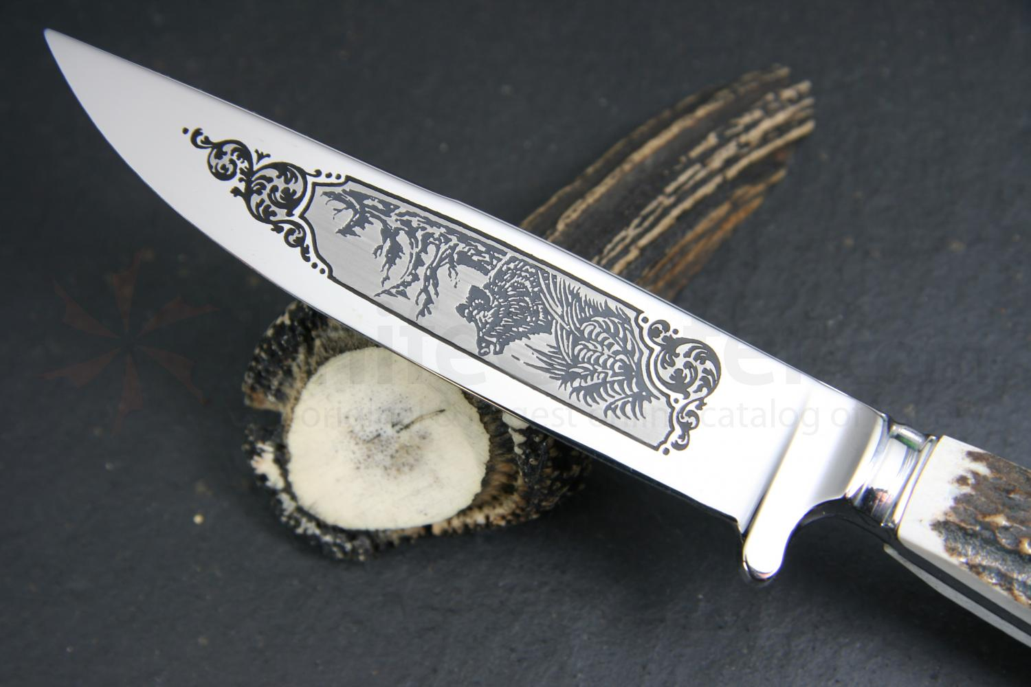 Hubertus Decorated Boar Scene Nicker Fixed 3.75 inch Stainless Blade, Stag Handles, Leather Sheath