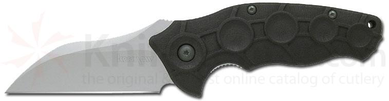 Kershaw 1820 Needs Work Folding Knife Assisted 3 inch Plain Blade, Polyimide Handle