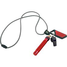 ASP Palm Defender Safety System (Red) 4 inch Keyring Baton Pepper Spray, Whistle, Sapphire LED Light, Lanyard